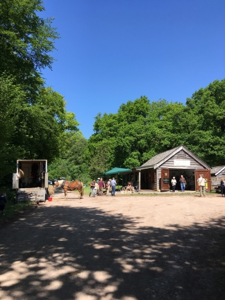 wood fair 2018